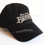 Japan Auction - Brave Hat